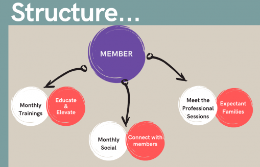 "Teal over light grey square. In the teal part, there is white lettering that says ""Structure..."" On the grey part there is a large purple circle with the word ""member"" in it. There are three arrows coming from it, each one pointing to a white and peach circle. The first arrow points to a white circle that says ""Monthly Trainings"" and a peach circle that says ""Educate and Elevate."" The second white circle says ""Monthly Social"" and the second peach circle says ""Connect with Members."" The third white circle says ""Meet the Professional Sessions"" and the third peach circle says ""Expectant Families."""